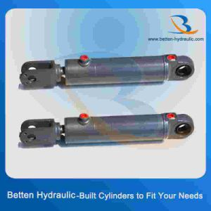 Hydraulic Cylinder with Fast Delivery pictures & photos
