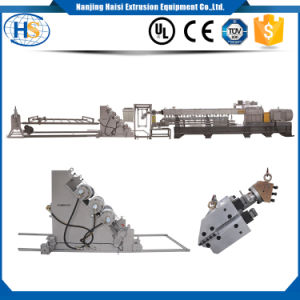 PP PE PS Twin Screw Extrusion Line Plastic Sheet Extruder pictures & photos