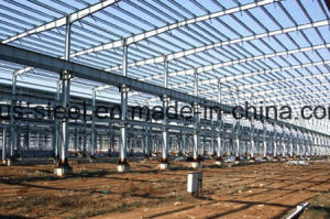 Prefabricated Steel Structure Project/ Light Steel Construction pictures & photos