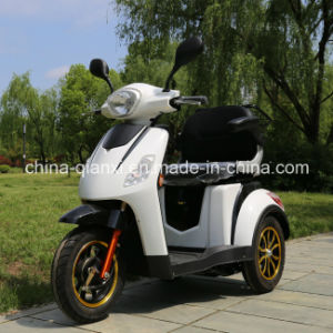 Disabled Motorized Tricycles with Ce pictures & photos