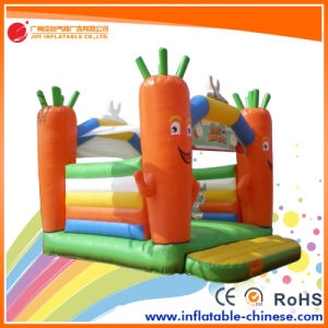 2017 Inflatable Jumping Bouncy Castle Moonwalk/Inflatable Toy (T1-506B) pictures & photos