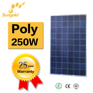 A Grade PV Panels From Sungold Poly Solar Panel 250W