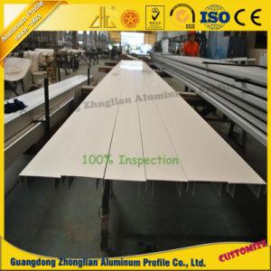 OEM Horizonal Aluminium Section Aluminum Angle pictures & photos