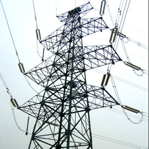 Supplier with ISO Certificate for Transmisson Angle Tower pictures & photos