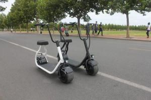 350W Brushless Electric Kick Scooter with 48V/10ah pictures & photos