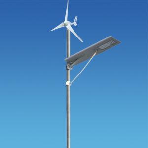 40W Solar Wind Integrated Street Light System in Kenya