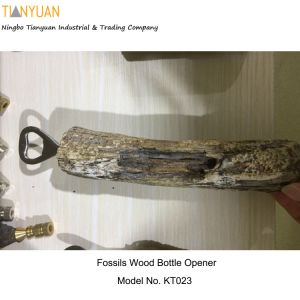 Bottle Opener-Fossils Wood with Stainless Steel Metal Parts / Anthropologie