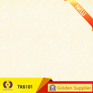 600X600mm Building Material Porcelain Floor Tile (TK6101) pictures & photos