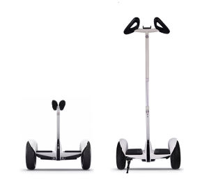 Ninebot Electric Biccyle with Handler Bar pictures & photos