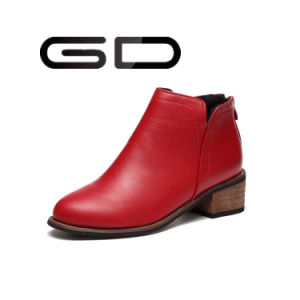 Custom Design Big Sizes Ladies Ankle Boots Fashion Women Shoes pictures & photos