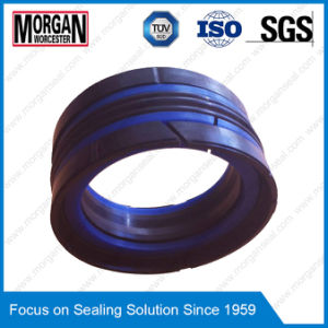 Das/Tpm/Kgd Series Hydraulic Cylinder Piston Seal Ring pictures & photos