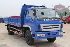 Clw Brand New 4X4 5tons Small Dump Truck for Sale pictures & photos