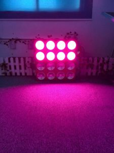 Red Blue Color Plant Growing System High Power COB LED Grow Light 1200W pictures & photos