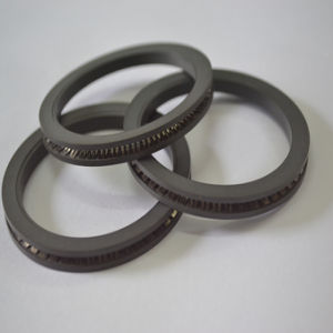 PTFE S Spring Energized Lip Seals for Valve pictures & photos