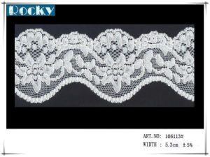 SGS Oeko Standards Dyeing Quality Streth Lace and Lace Fabric pictures & photos