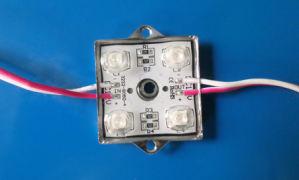 5050 LED Lights DC12V Waterproof LED SMD pictures & photos