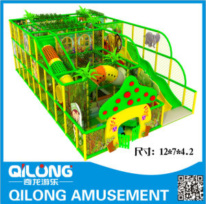 Indoor Playground Game Machine with Price (QL-150604A) pictures & photos
