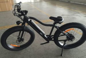 48V750W Electric Fat Ebike (LMTDF-35L) pictures & photos