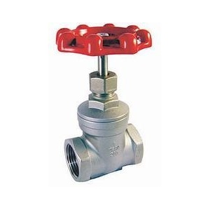 Stainless Steel Threaded End Gate Valve pictures & photos