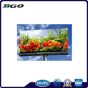 Backlit PVC Cold Laminated Banner Printing (500dx500d 18*12 510g) pictures & photos