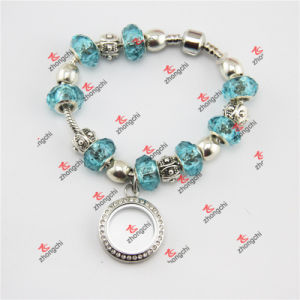 Fashion Alloy Lockets/Glass Beads Snake Bracelet Gifts (PDE60229) pictures & photos