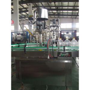 Signal-Head/Multi-Heads Capping Machine (PY-XGJ2000)