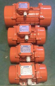 Concrete Vibrator 2.2kw (ZF220) pictures & photos
