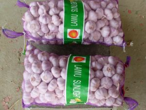 Chinese New and Fresh Garlic pictures & photos