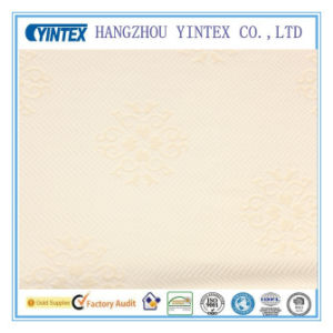 2016 Yintex Polyester Seersucker Yarn Dyed Fabric for Home Textiles pictures & photos