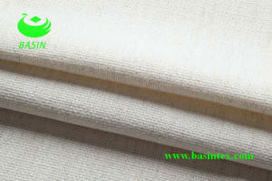 Polyester Linen Fabric (BS6037) pictures & photos