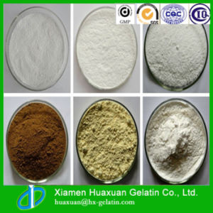 Pharmaceutical Grade Fish Collagen pictures & photos