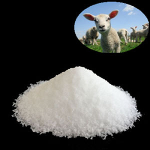 Closantel Powder Feed Grade Feed Additive Veterinary Drug CAS: 57808-65-8 pictures & photos
