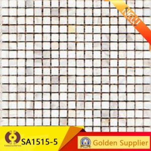 Mosaic / Wall Tile (MS4020-03) pictures & photos