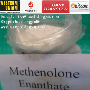 Raw Steroids Primobolan Methenolone Enanthate CAS: 303-42-4 for Muscle Gain