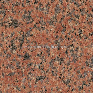 Natural Stone Granite Tian Shan Red Slabs for Tiles and Countertops pictures & photos