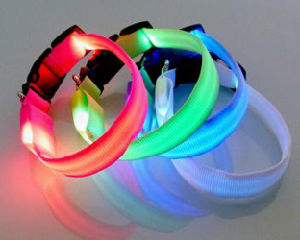Best Sale USB LED Dog Collar pictures & photos