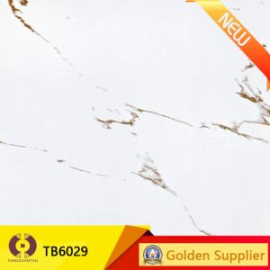 New Design Ink Jet Stone Porcelain Floor Wall Tile (TB6029) pictures & photos