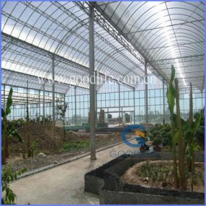 6mm Twin-Wall Polycarbonate Sheet for Greenhouse Roofing pictures & photos