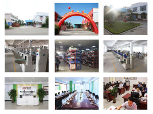 Rice Bar Type Automatic Feeding Packing Line pictures & photos