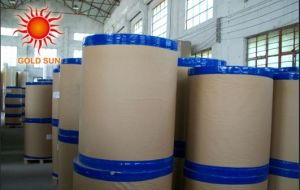 Thermal Paper in Jumbo Rolls pictures & photos