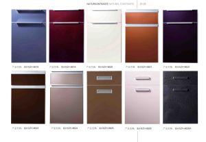 Kitchen Cabinet Door Panel pictures & photos