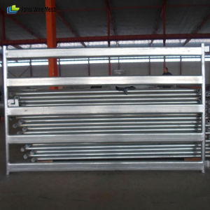 Heavy Duty Hot Dipped Galvanized Cattle Yard Panels pictures & photos