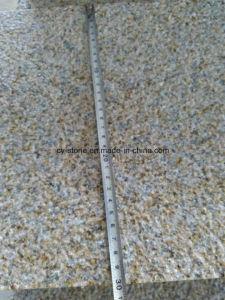G682 Sunset Gold Granite Bushhammer Border Tiles for Swimming Pool Paver