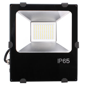 High Quality 5 Years Warranty Meanwell Driver IP65 Waterproof Floodlight 100W Garden LED Flood Light pictures & photos