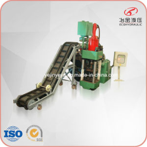 Sbj-315 Metal Sawdust Screw Press Briquette Machine (factory) pictures & photos
