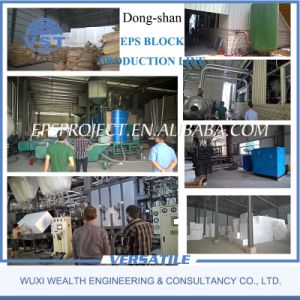 Dongshan EPS Block Machine (SPB2000-6000) pictures & photos