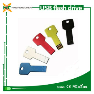 High Speed Key Chains USB Flash Drive pictures & photos