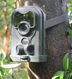 Fraud and Theft Detection Trail Camera