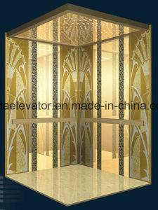 Passenger Elevator From Trustworthy Manufacturer (JQ-N024) pictures & photos