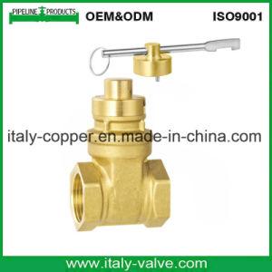 European Quality Brass&Bronze Magnetic Gate Valve (AV4066) pictures & photos